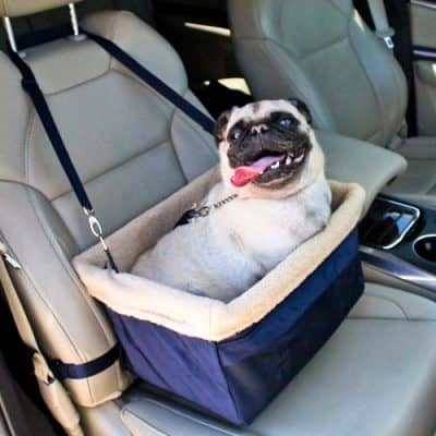 Devoted Doggy Dog Car Seat