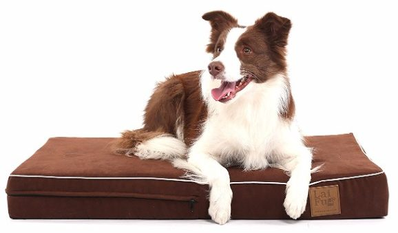 LaiFug 45DHI Dog Bed