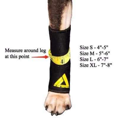 10 - Dog Compression Sleeve