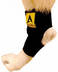 2 - Agon Dog Canine Rear Leg Hock Joint Brace