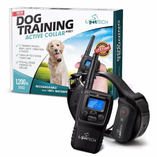 Pet Tech Dog Training Collar Review