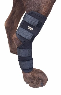 3 - Dog Canine Rear Leg Hock Joint Wrap Protects Wounds
