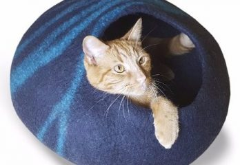 Top 8 Best-Rated Cat Beds You Should Own
