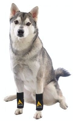 4 - Agon Dog Canine Front Leg Brace Paw Compression Wraps With Straps