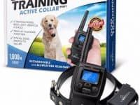 4 - PetTech Remote Controlled Dog Training Collar