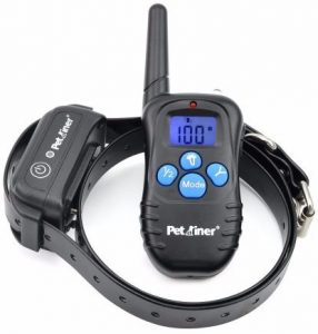 5 - Petrainer PET998DBB Waterproof Shock Collar