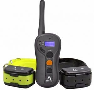 7 - Patpet Dog Training Collar