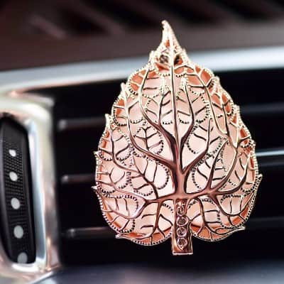 #5 Aromatherapy Car Air Freshener