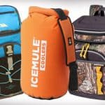 Top 10 Best Backpack Coolers in 2017