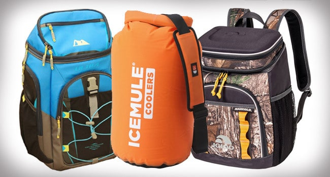 Discover Top 10 Best Backpack Coolers On The Market – In 2021