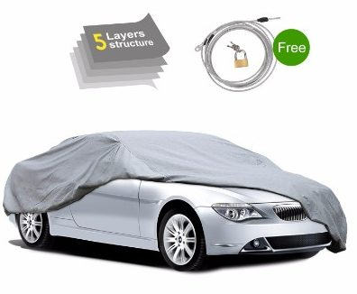 Pumpkin 5-Layer Car Cover