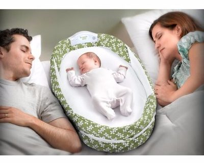 Baby Delight Snuggle Nest Surround Portable Infant Sleeper