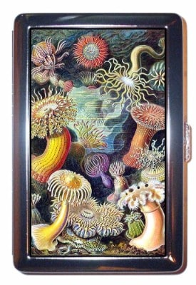 Coastal Colors Steampunk Sea Anemone Cigarettes Case
