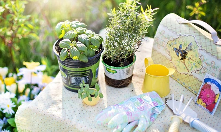 Best Gardening Gloves Review In 2021 – Top 9 Products