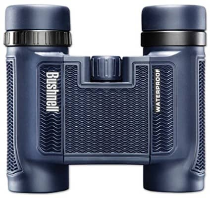 Bushnell 138005 H2O Waterproof_Fogproof Compact Roof Prism Binocular, 8 x 25-mm, Black