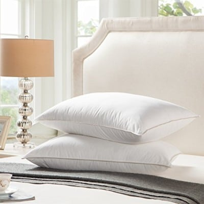 Egyptian Bedding 1200 Thread Count Goose Down Pillow, King Size