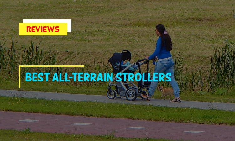 Top 9 Best All-Terrain Strollers In 2021 Review & Tips