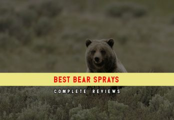 Top 5 Best Bear Sprays in 2018 Reviews & How To Use It