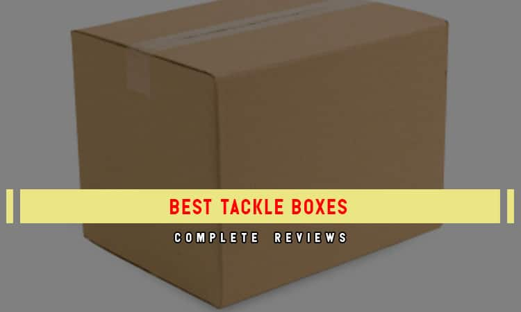Top 9 Best Tackle Boxes In 2021 Review & Buyer's Guides