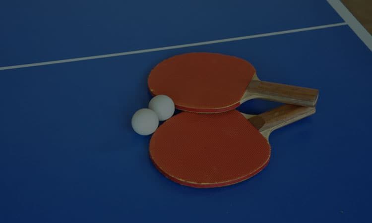 Top 10 Best Ping Pong Paddles In 2021 Review