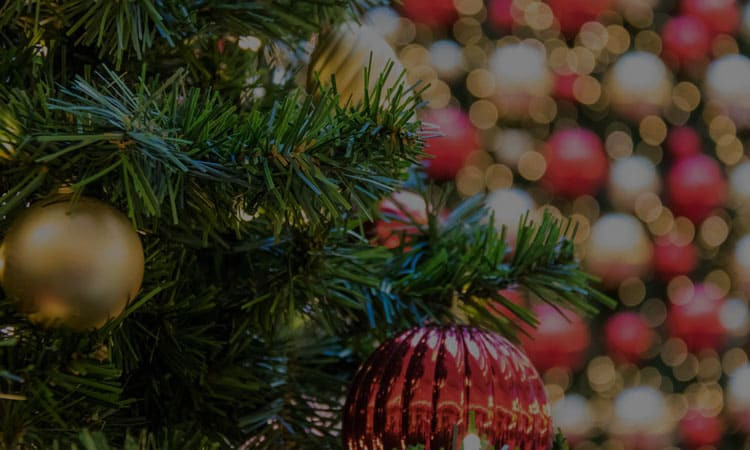 9 Things You Don't Know You Need for This Upcoming Christmas