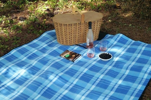 Extra Large Picnic & Outdoor Blanket with Water-Resistant Backing - 60 x 80 inches