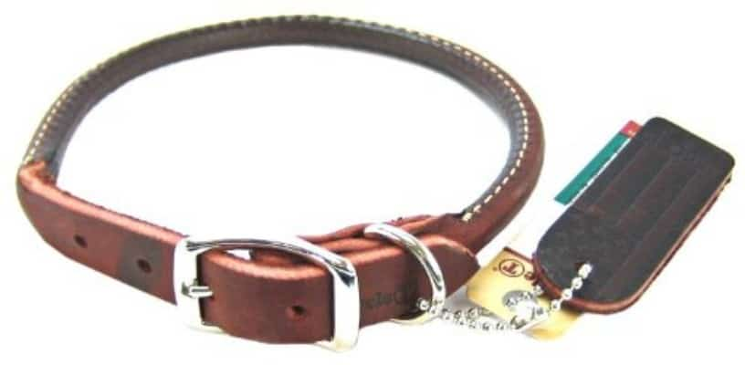 Coastal Pet Circle T Nickel Buckle Latigo Leather Round Dog Collar