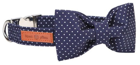 Lionet Paws Dog Cat Collar Bowtie
