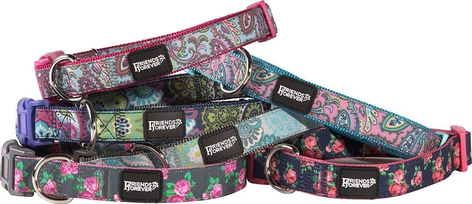 Friends Forever Paisley Dog Collar