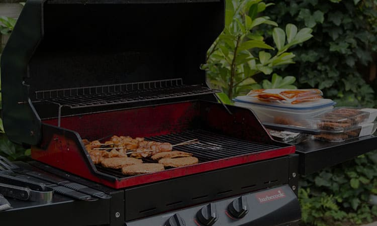 Top 14 Best Gas Grills In 2021 Review & Buying Guides
