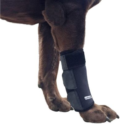 Labra Co. Dog Canine Front Leg Compression Brace Wrap Sleeve