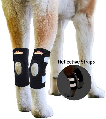 NeoAlly Cat and Dog Ankle Brace Pair