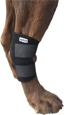 Buddy Products Labra Co. Dog Canine Rear Leg Hock