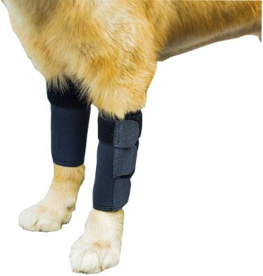 GNIKS Dog Front Leg Wrap Protects Brace