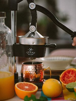Zulay Professional Citrus Juicer - Manual Citrus Press and Orange Squeezer