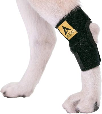 Agon Dog Canine Rear Hock Joint Brace Compression Wrap with Straps Dog for Back Leg Protects Wounds