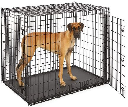 MidWest Homes for Pets XXL Giant Dog Crate | 54-Inch Long