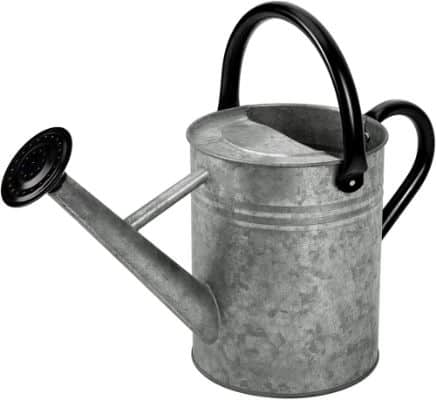 Metal Watering Can Galvanized Steel Watering Pot with Removable Spray Spout