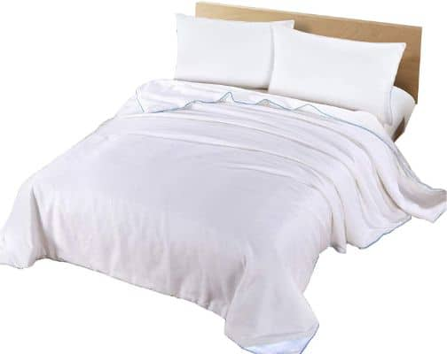 Silk Camel Luxury Allergy-Free Comforter:Duvet Filling with 100% Natural Long Strand Mulberry Silk