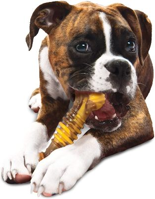 Flavor Frenzy Chew Dog Bone